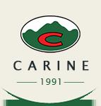logo-carine-01aa